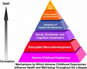 ACE Neurodevelopmental Pyramic